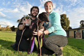 Lithgows course to Cup glory