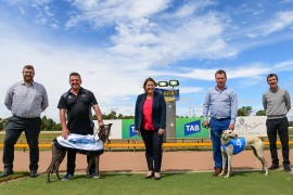 Greyhound clubs unite to launch exciting 'Western Festival of Racing'