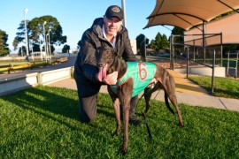 Bulleteer's shot at Ballarat glory