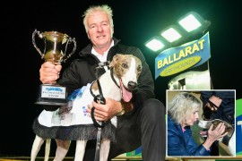'King Ferdinand' rules in Ballarat Cup
